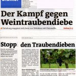 Medienbericht Feldschutzorgan Hainburg - Weintraubendiebstähle | (C) by Bezirksblätter Bianca Mrak