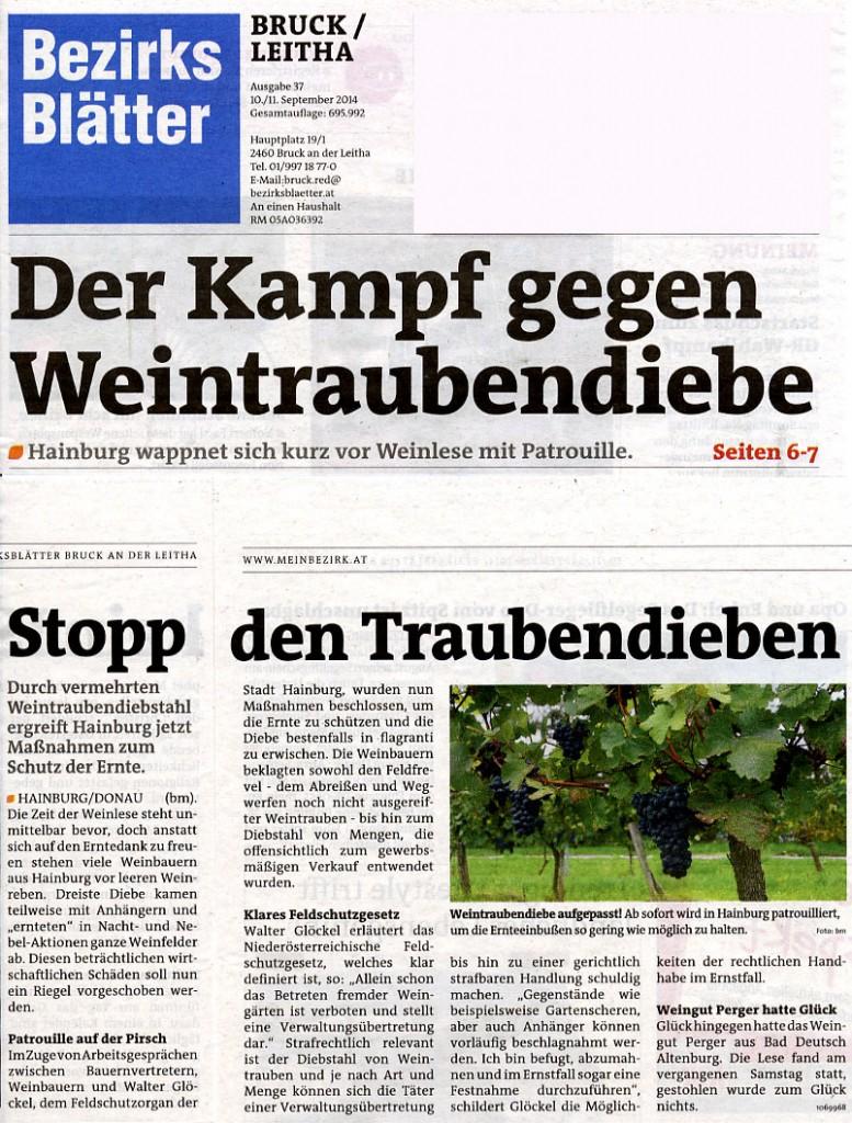 Medienbericht Feldschutzorgan Hainburg - Weintraubendiebstähle | (C) Bezirksblätter - Bianca Mrak