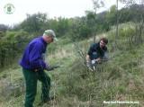 Pflegearbeiten im Naturschutzgebiet Spitzerberg in der Praxis | Foto: Berg-und-Naturwacht.org