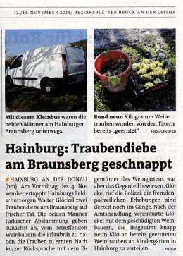 Medienbericht der Bezirksblätter über die am Braunsberg geschnappten Traubendiebe durch Feldschutzorgan Walter Glöckel